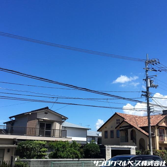 IMG_5547.jpg